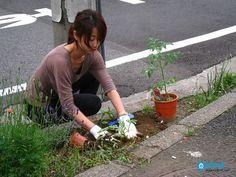 Garden Guerilla Ligstoel.36 Beste Afbeeldingen Van Guerilla Gardening Guerrilla Tuinieren