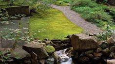 Where a lawn won't grow, plant moss—no mowing, no fussing, no problem. Low Maintenance Landscaping, Low Maintenance Garden, Water Garden, Lawn And Garden, Garden Path, Moss Lawn, Lake Landscaping, Landscaping Ideas, Outside Plants