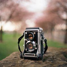 i love a pretty camera by manyfires, via Flickr