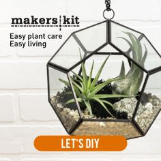 Beautiful, functional DIY kits. Build an air plant terrarium. Great gift idea for makers, DIY enthusiasts, and those who love plants! Monthly craft subscription box available too! (affiliate)