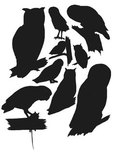 realistic owl silhouettes - Google Search