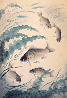 大野麥風「フナ」昭和13(1938)年3月発行