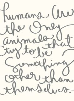 humans are ++ satsuki shibuya ● SPARK*