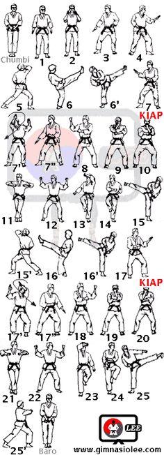 Go ninja go Taekwondo Belt Display, Taekwondo Belts, Taekwondo Training, Martial Arts Training, Taekwondo Techniques, Martial Arts Techniques, Jiu Jitsu, Hapkido, Taekwondo Quotes