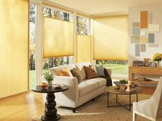Custom honeycomb shades: Applause® by Hunter Douglas,http://www.hwfashions.com/products/CustomWindowTreatments/CustomShades