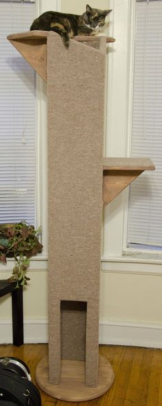 Cat Demands Tower, Cat Gets - Sisal would work better for us