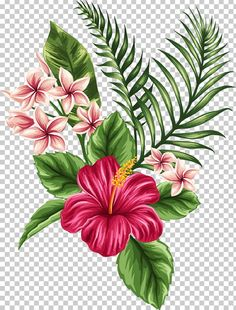 Hibiscus in hibiscus flower drawing Flower Tropics Drawing tropical pink petaled flowers and Tropical Flowers, Tropical Flower Tattoos, Hawaiian Flowers, Hibiscus Flowers, Exotic Flowers, Tropical Art, Purple Flowers, Hawaiian Flower Drawing, Hibiscus Flower Drawing