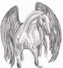 Image result for horses drawings