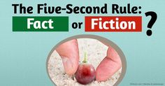 The five-second rule states that if you drop a piece of food on the floor and pick it up within five seconds of it touching the surface, it's still safe to eat. http://articles.mercola.com/sites/articles/archive/2015/10/17/five-second-rule-for-food.aspx