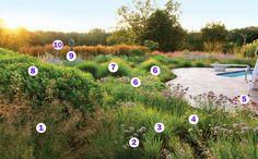 Fine Gardening Magazine- Jones Road Adam Woodruff, garden designer