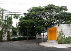 A mysterious orange door on a suburban São Paulo street leads to a dream house and gardens designed by architect Isay Weinfeld.