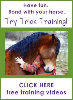 Useful tricks can make life a whole lot easier (and safer) around your horse.