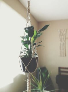 Show your plants some love with this modern macrame plant hanger. Simple, yet meticulously hand-crafted, this beauty would be equally at home gracing a