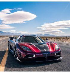 Egg - - -follow me @supercarpictures.ig for more - - - - Credit: @adam_bornstein - - - - #supercar #lamborghini #ferrari #cars #sportscar #sportscars #l4l #f4f #pagani #mclaren #aventador #huracan #lamborghiniaventador #bugatti #bugattiveyron #bugattichiron #ferrarilaferrari #lamborghinihuracan #carlifestyle #camaro #corvette #luxury #millionaire #gains #lifestyle #rollsroyce #yachts #newyork #nyc