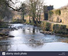 Path alongside the River Tavy and abbey still house walls, Tavistock, Devon, UK Devon And Cornwall, Devon Uk, Dartmoor National Park, Tavistock, Hidden Places, Plymouth, Paths, National Parks, Old Things