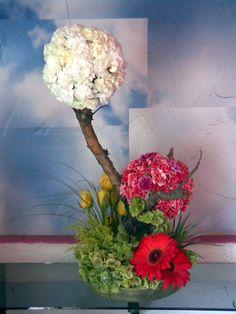 topiarios flores - Buscar con Google Tropical Flower Arrangements, Tropical Flowers, Cold Porcelain Tutorial, Church Flowers, Garden Club, Candle Centerpieces, Arte Floral, Ikebana, Flower Designs