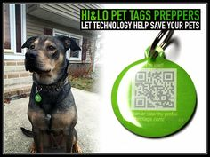 Hi&Lo QR Pet ID Tags: Preppers Let Technology Help save Your Pets
