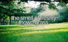 The Smell of Freshly Mown Grass