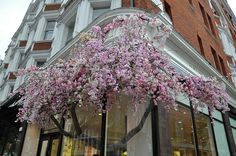 Amazing window display at Jo Malone in London spotted by @Lotte & Bloom .