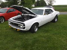 1967 Camaro, Muscle Cars, Heaven, Trucks, Vehicles, Motors, Sky, Heavens, Truck