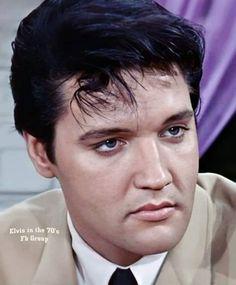 Cute Piglets, Elvis Presley Photos, King Of Music, Memphis, Washington, Image, Instagram, Photos