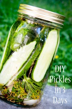DIY homemade pickles in 3 days.  This recipe includes a natural fermentation process  because she says to let the pickles sit unrefridgerated for 3 days.  Soooo nutritious!
