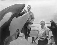 Great collection of behind the scenes photos from the American Museum of Natural History. Ray De Lucia and Matt Kalmenoff working on Killer Whale Group, Hall of Ocean Life.