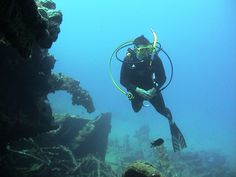 Scuba Diving in the Virgin Islands