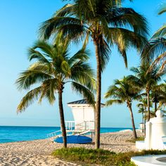 Fort Lauderdale, Florida, named one of the best cities in the US for getting married. Daily Catch | CoastalLiving.com