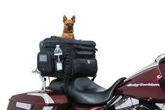 The Paws Mahal - Grand Pet Palace Motorcycle Pet Carrier, $216.99 (http://www.thepawsmahal.com/grand-pet-palace-motorcycle-pet-carrier/)
