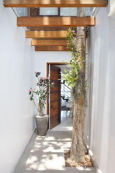 Apartamento, decoração de apartamento, com tons neutros. No corredor, porta de madeira, flores e plantas.
