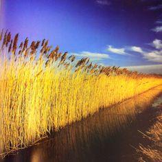 Charlie Waite Landscape Photography   em-visi-blog: Book Review: Charlie Waite, Landscape - The Story of 50 ...