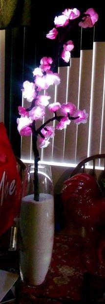 DIY Cherry Blossom Lights