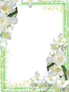 Transparent Green Flowers Frame