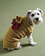 Free knitting and crochet patterns. Flower Garden Dog Sweater. CUTE!