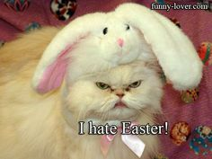 I hate Easter!