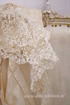 Gorgeous Lace Piece ~