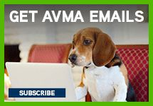 Distance education programs in veterinary technology accredited by the AVMA Committee on Veterinary Technician Education and Activities (CVTEA)