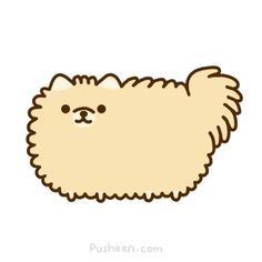 It's Tommy the Pomeranian - Pusheen style! Requested byhttp://mkosut.tumblr.com/