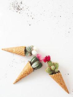 DIY cônes cactus: