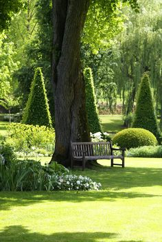 Le Parc Floral d'Apremont-Sur-Allier Alternatives to Grass for your Backyard For most, spending less is Formal Gardens, Outdoor Gardens, Parc Floral, The Secret Garden, White Gardens, Garden Spaces, Balcony Garden, Topiary, Shade Garden