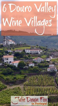 6 Traditional Portuguese wine-producing villages to explore in the Alto Douro Wine Region of Portugal: Provosende, Ucanha, Salzedas, Trevões, Barcos and Favaios. Discover Cistercian monasteries, baroque manor houses, traditional schist cottages and other interesting architecture. Learn about local culture, history and traditions, sample port wine, Douro wine and moscatel wine and corner bread from Favaios. Click to read more