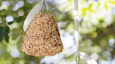 How to make a birdseed bell - something else I need to try