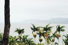 Flagstaff Hill Lookout, PORT DOUGLAS // @lifemoreblessed