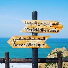 Morocco desert tours from Marrakech, tours from Tangier,Marrakech day trips,Sahara desert trips from Marrakech to Zagora & Merzouga Solo Travel, Us Travel, Visit Marrakech, Desert Tour, Small Group Tours, Morocco Travel, Tangier, Tour Operator, Travel Agency