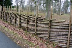 55 Easy and Cheap Privacy Fence Design Ideas /.Adorable 55 Easy and Cheap Privacy Fence Design Ideas /. Cheap Privacy Fence, Privacy Fence Designs, Diy Fence, Fence Landscaping, Backyard Fences, Garden Fencing, Pergola Patio, Pool Fence, Fence Gate