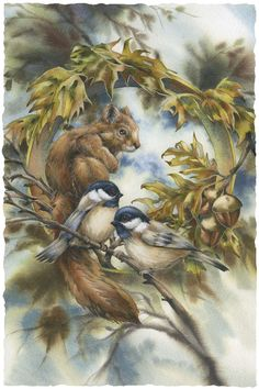 Bergsma Gallery Press::Paintings::Natural Elements::Wild Land Animals::Small Mammals::Some Of My Best Friends Are Nuts - Print