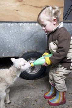 An adorable baby feeding an adorable baby. This photo couldn't get any cuter if it tried! #sheep