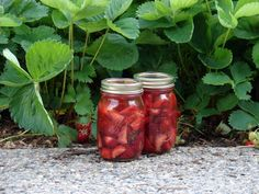 Tequila & Strawberries