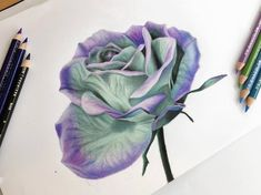 c893798174 Magical Mint and Purple Flower Drawing Print - Wall Art - Teal